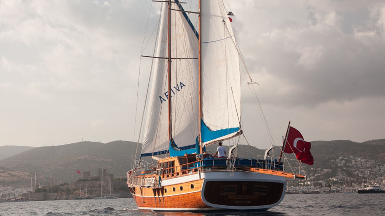 Ariva 1