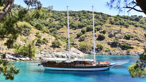 Deniz Felix Balina Caicco